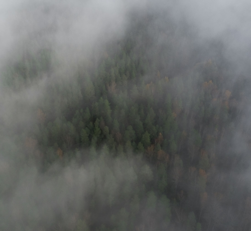 Sügis läbi uduste pilvede kaedes