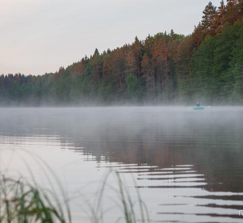 Hommik järvel...