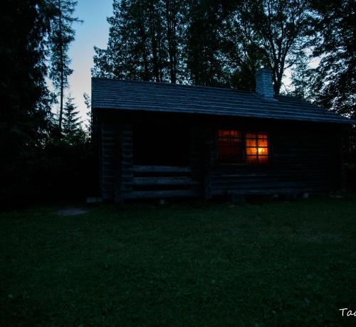 Metsaonn õhtuhämaruses...