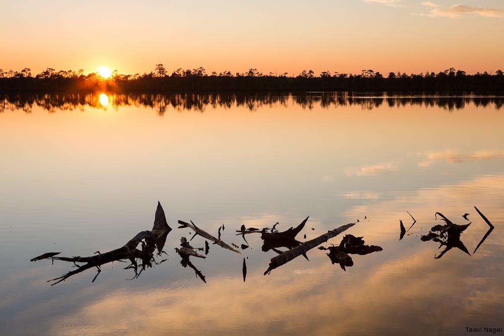 Milline päikeseloojang, rabajärv ja vaikus