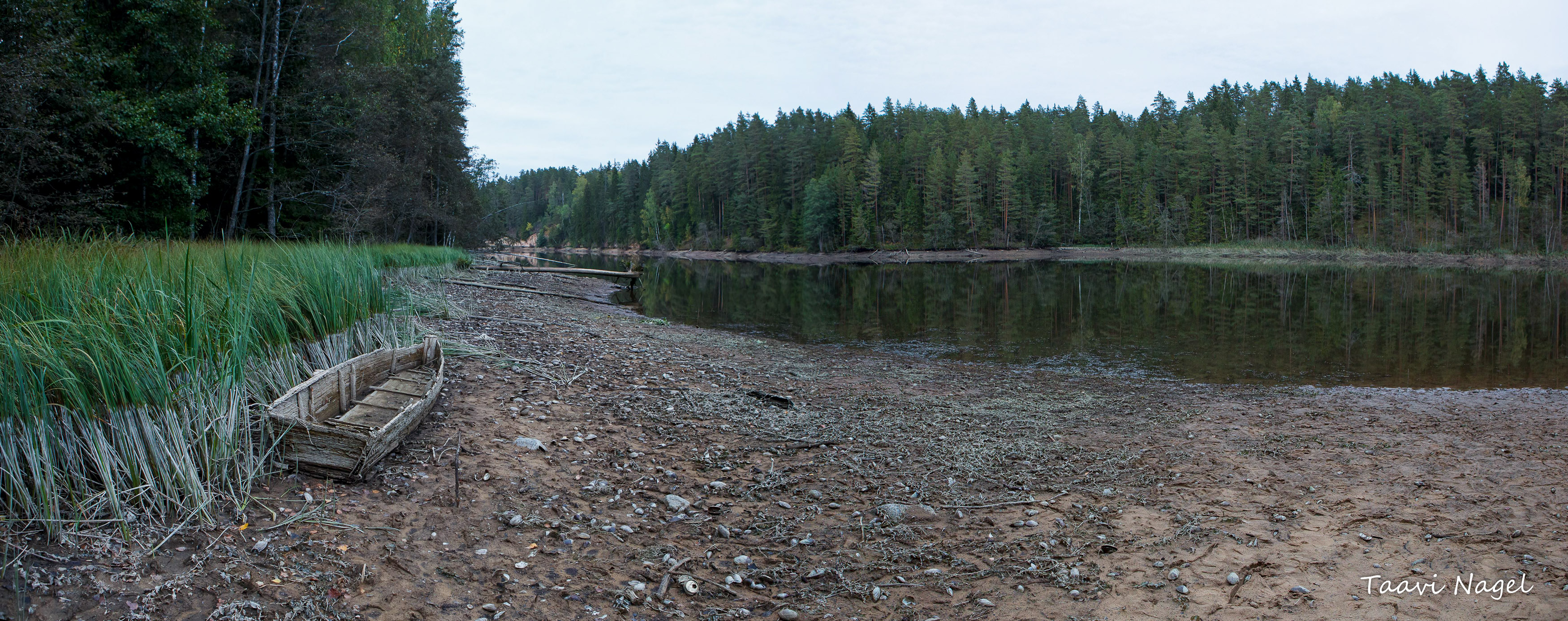 Saesaare järv