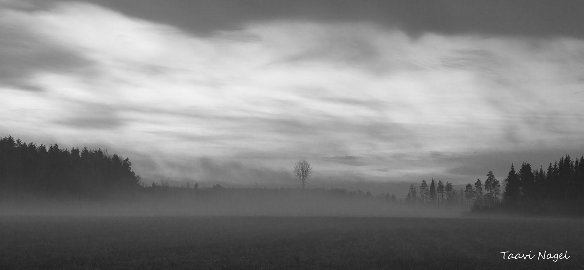 Ilm Eestis  ¤ 05. Detsember 2015 +8