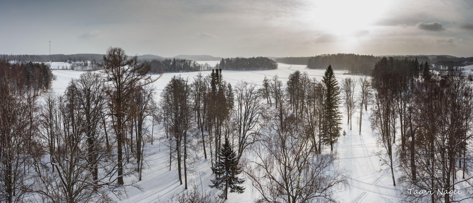 Vaade talvisele järvele -pano.