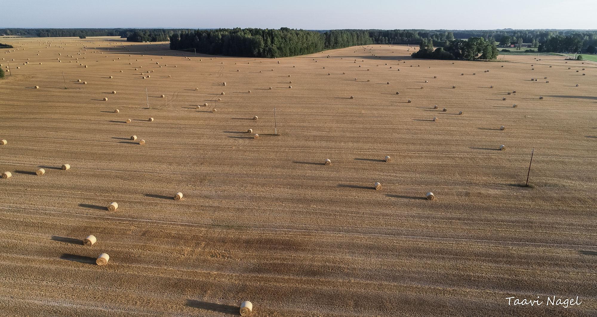 Lummav vaade.. Au põllumeestele...!!!