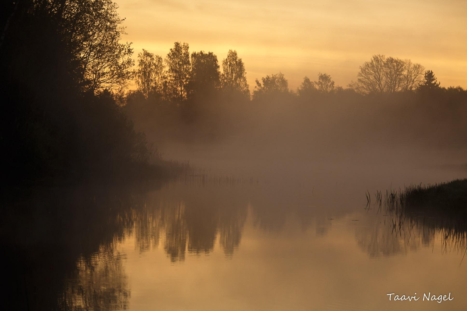 Hommik Viljandimaa jõel