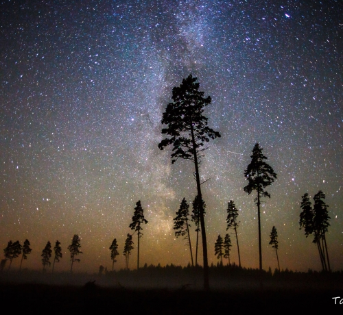 Miljon Tähte.....