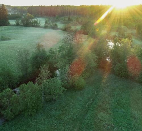 Särav hommik..