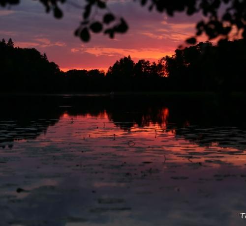 Õhtu kauni Pühajärve kaldal...