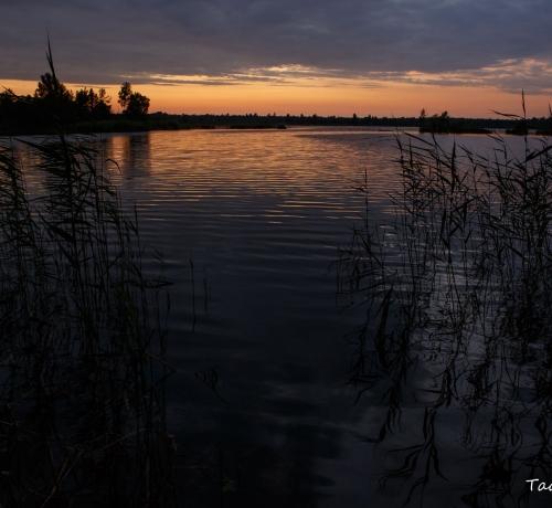 Õhtu järvekaldal