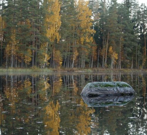 Kivi &järv... Kivijärv ¤ Põlvamaa