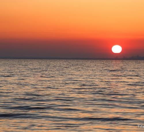 Hommik järve kaldal