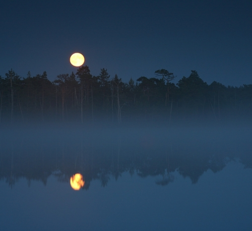 Kuu tõus