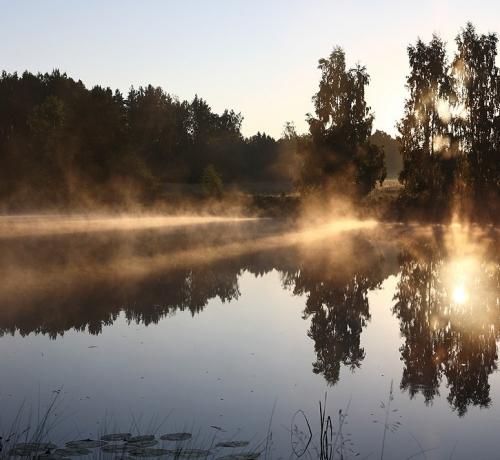 Hommik järvel