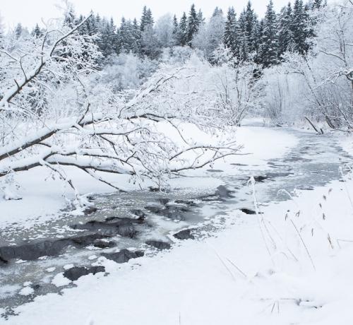 Milline imeline talv