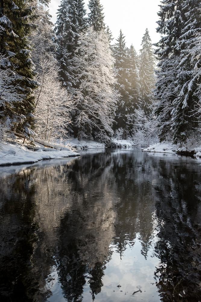 Kaunis Eestimaa talv