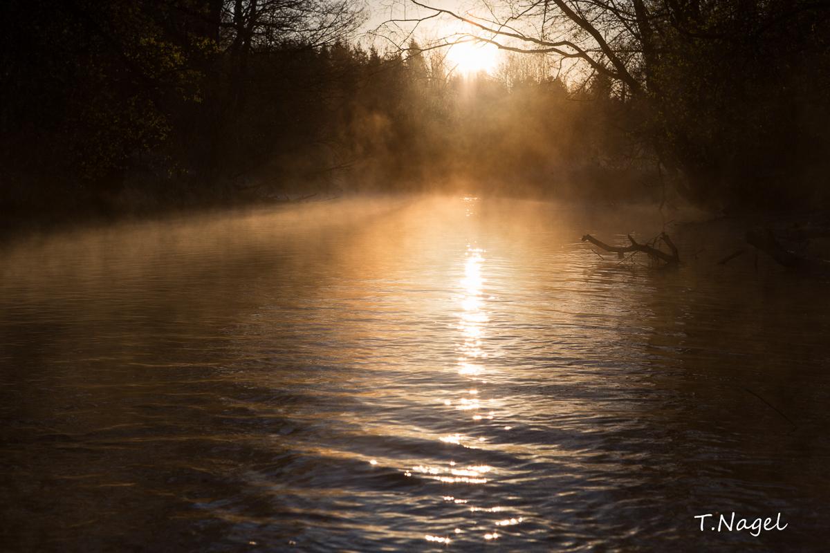 Hommik 6.14 ¤ Lõuna -Eesti 2014 Ahja jõel