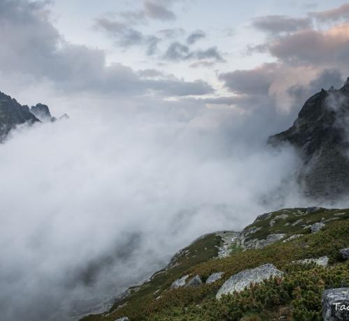 Mäed ja udu...