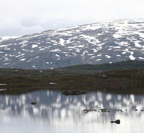 Suvine põhjamaa