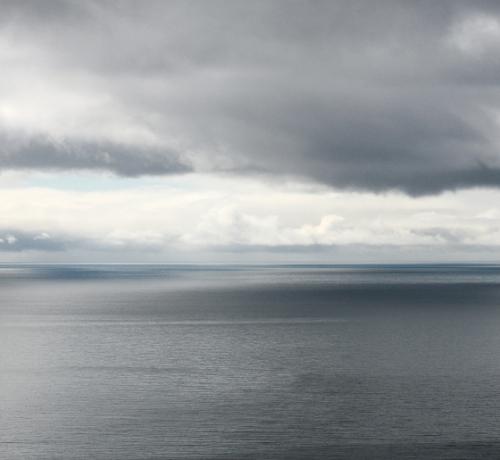 Vaade metsikule merele